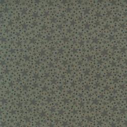 tissu patchwork vert imprimé étoiles de mer collection Ship To Shore Lynette Anderson