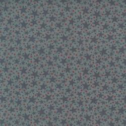 tissu patchwork bleu imprimé étoiles de mer collection Ship To Shore Lynette Anderson