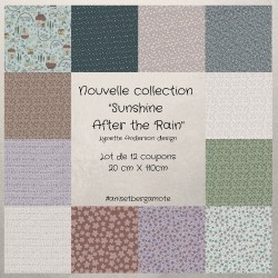 Tissus patchwork de la Collection sunshine after the rain de Lynette Anderson lot de 12 coupons