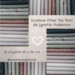 Tissus patchwork de la Collection Sunshine After The Rain de Lynette Anderson lot de 12 coupons 50X110cm