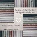 Tissus patchwork de la Collection Sunshine After The Rain de Lynette Anderson lot de 12 coupons 50X55cm